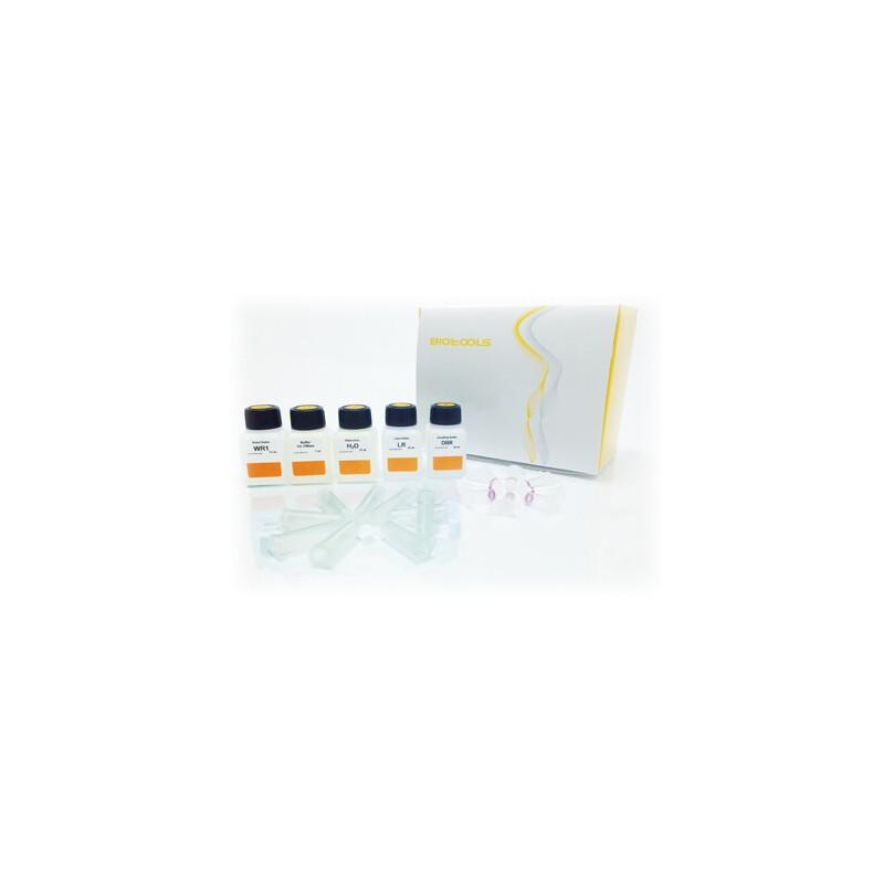 SPEEDTOOLS RNA Virus Extraction kit