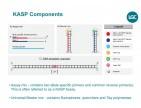 Servicios de genotipado (incluyendo extracción DNA)