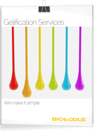 gelification-services